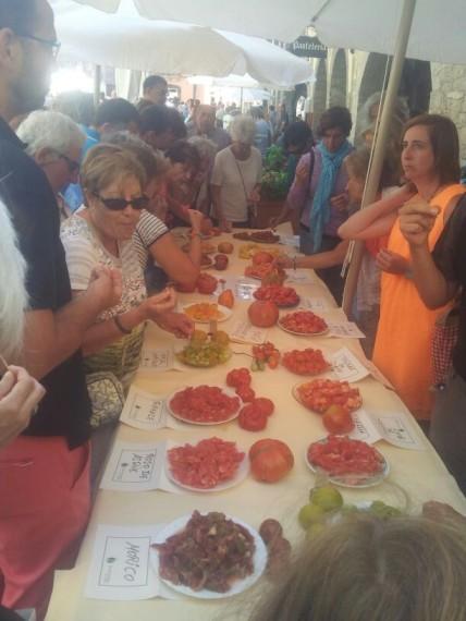 Degustación tomates
