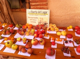 Puesto de variedades tradicionales