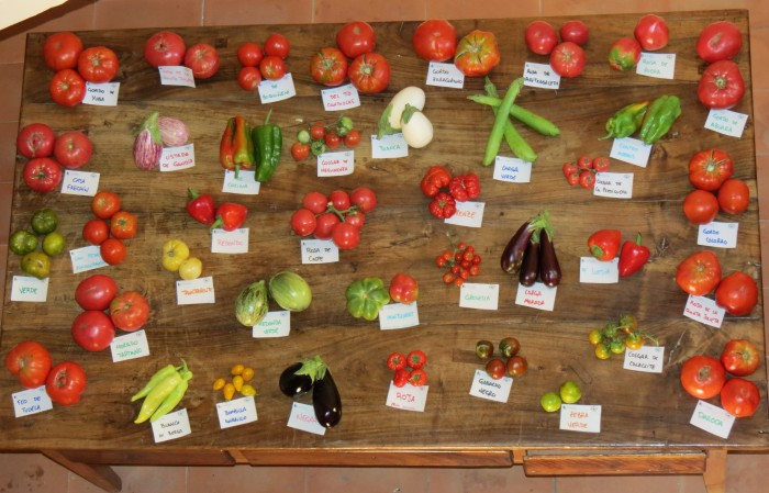 muestra_variedades_locales_ii_feria_aragonesa_biodiversidad_agricola_rsa