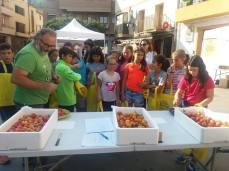 cata tomates andorra 2