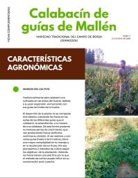Calabacín de guías de Mallén_ficha complementaria