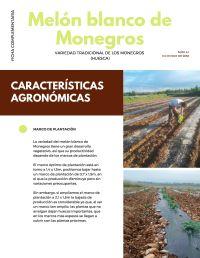 Melón blanco de Monegros_ficha complementaria