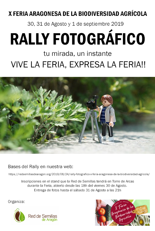 RALLY fotografico